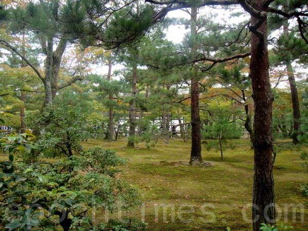 金閣寺園內景色(藍海/大紀元)