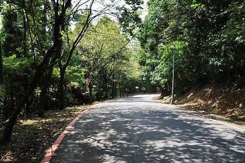 竹子湖路。约步行30几分钟,返抵竹子湖公车站。 (图片提供:tony)