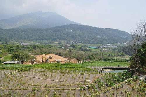 途中俯瞰竹子湖梯田,远眺七星山、小油坑风景。 (图片提供:tony)