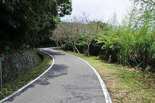 续行中正山产业道路,绕回竹子湖路。 (图片提供:tony)