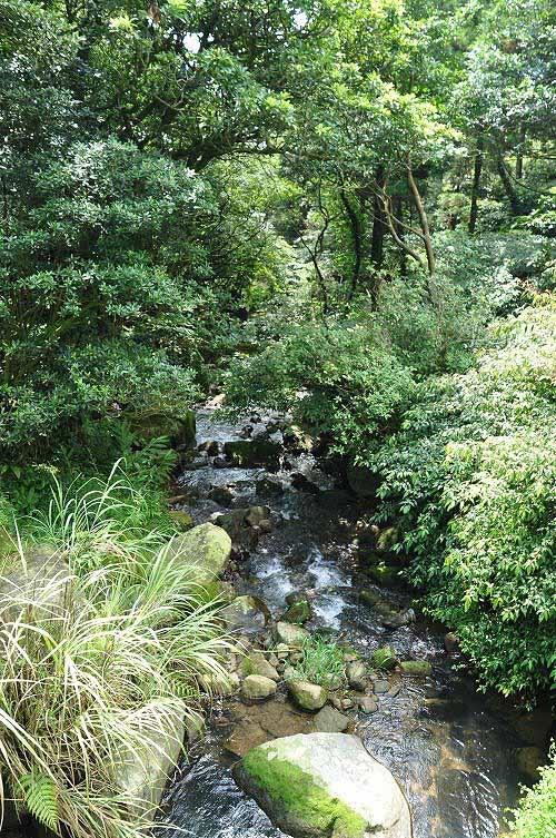 磺溪上游,溪水充沛,淙淙作响。(图片提供:tony)