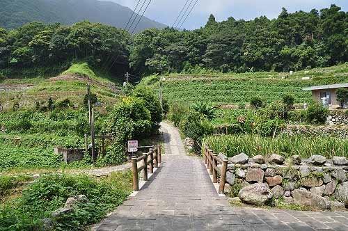 小水泥桥。过桥后左转,为青枫步道入口。 (图片提供:tony)