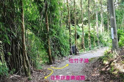 古道出口处。右往猴崁产业道路,左往竹子湖(下湖地区)。 (图片提供:tony)