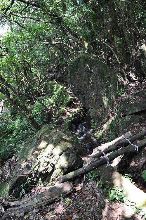 右岔路。小木桥越过水圳,通往猴崁产业道路里程约0.6K的转弯处。 (图片提供:tony)