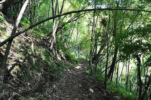 猴崁古道离开水圳,山路农径通往竹子湖。(图片提供:tony)