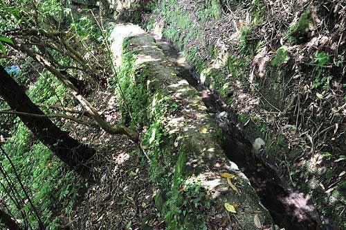 圳路临深壑,宛如独木桥。(图片提供:tony)