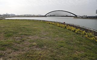 故宮南院開館 景觀區自然生態工法再現