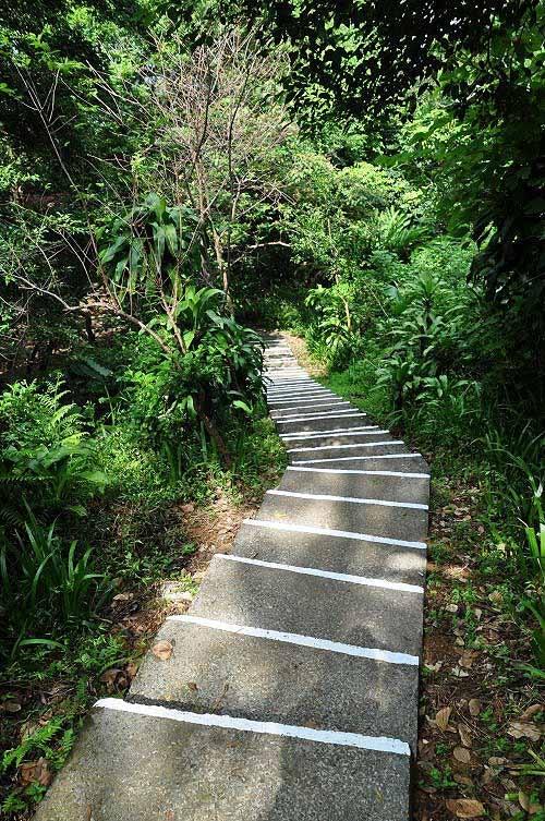 过国旗岭之后,转为下坡路,通往榕园。 (图片提供:tony)