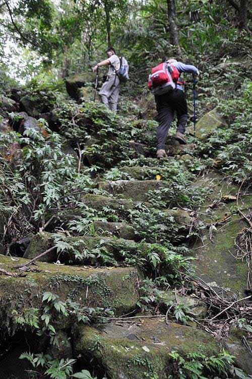 古道石阶(★6→★7)。 (图片提供:tony)
