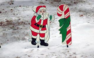 2015年的冬天走進了雪中的童話世界。(林南/大紀元)