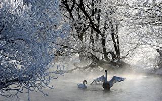 俄羅斯浴  蒸洗拍加雪地滾