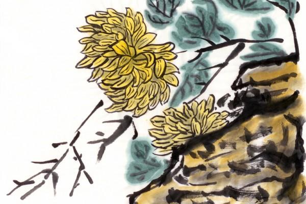 中国画菊花石(fotolia)