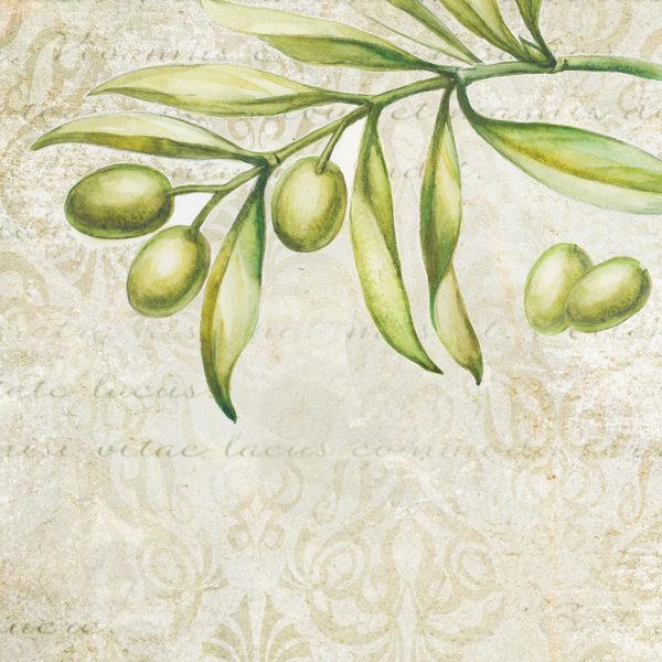 """管理学家建议在说""""不""""的同时""""给对方一个橄榄枝""""。(fotolia)"""