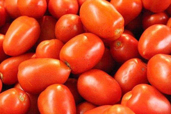 番茄,维生素高、含糖低,被称为糖尿病人的健康食品,但有人每次食用番茄血糖却会飙升。(商家提供)