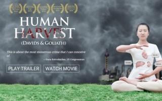 加拿大华裔导演李云翔执导的纪录片《活摘》迄今已获得多项国际大奖。(明慧网)