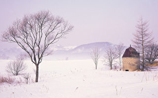 降雪量最大的10个大城市 美加日三国包揽