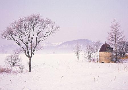 在北半球,有10个人口超过10万的大城市每年的积雪量都在2.3米以上,且这些城市均集中在美国、加拿大和日本三个国家。图为冬季雪景。(Fotolia)