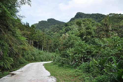 循水泥步道走往乡林农场大门。 (图片提供:tony)
