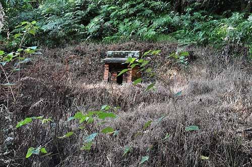 步道左侧上方山坡有一座小庙(可能是有应公庙),须特别留意才不会错过。 (图片提供:tony)