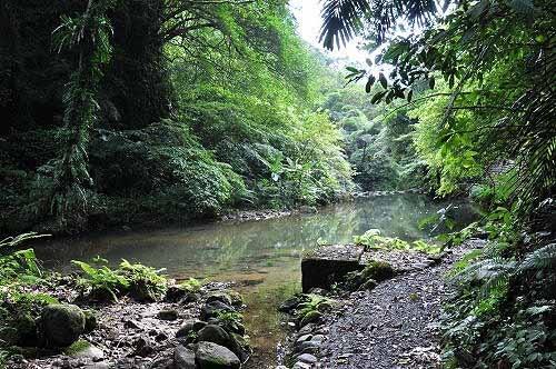望古瀑布下方的溪潭。 (图片提供:tony)