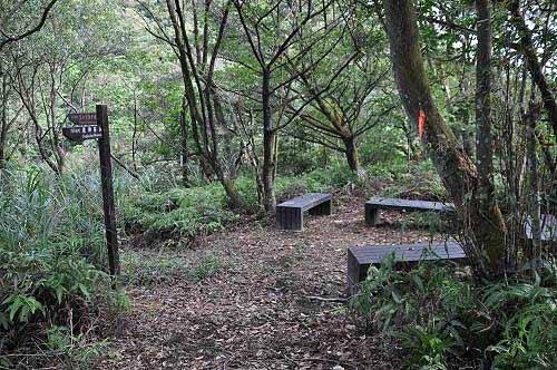 上棱。小空地设有木椅休憩区。 (图片提供:tony)