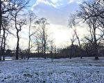 17日入冬以來的第一場雪,使法拉盛凱辛娜公園穿上了銀裝。(林丹/大紀元)