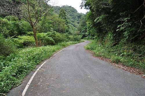 园区环山道路(昔日的番仔坑古道)。 (图片提供:tony)