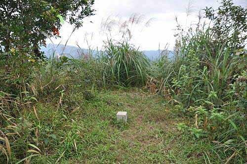 内平林山,海拔502公尺,三等三角点基石(一一一七号基石)。 (图片提供:tony)