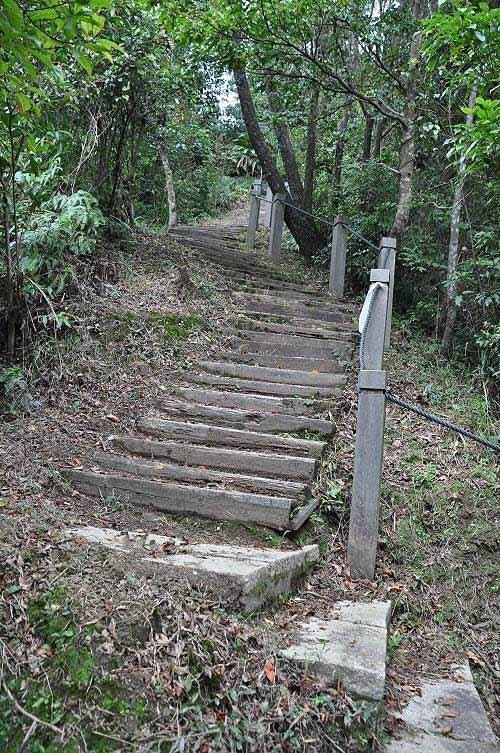 一小段陡爬之后,即接东步道。(图片提供:tony)