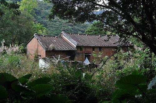 路旁荒废的红砖古厝。 (图片提供:tony)