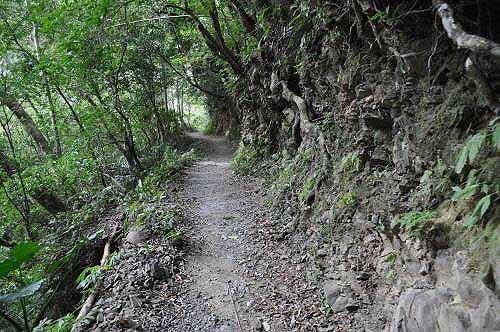 回程。循原路折返,走往登山口。 (图片提供:tony)