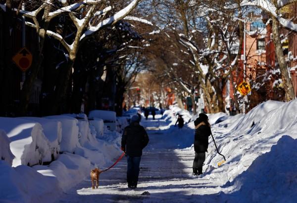 布鲁克林街道两旁的车被积雪掩埋,想要挖出自己家的车,先要找到才行。(Michael Heiman/Getty Images)