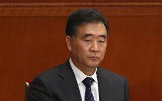 """中共国务院副总理汪洋""""十八大""""未能入常的内幕有最新说法。(Feng Li/Getty Images)"""