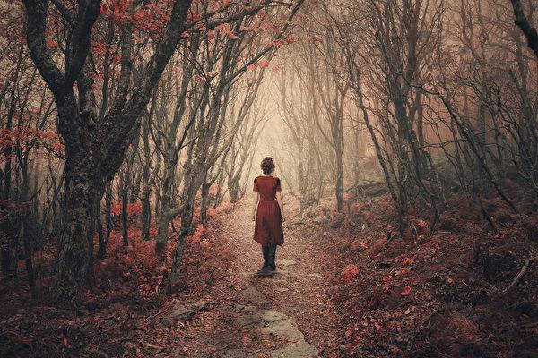 人们在走过图画一般的林间小径后,心情会变得比以前快乐和积极。(fotolia)