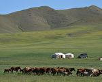 蒙古大草原(fotolia)