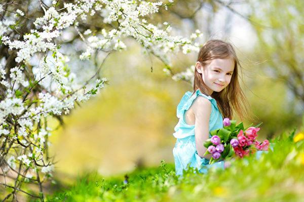 在盛开的樱花园可爱的小女孩拿着郁金香(fotolia)