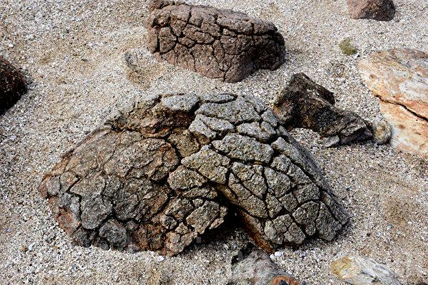 石英二长岩因状似菠萝包而被称为野外菠萝包。如果发挥一点想像力,它也可以是其他的东西。(孙明国/大纪元)