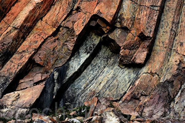 刚露出表面的六角岩柱一般是深灰色的,经过多年的氧化作用逐渐变才变成浅黄色。(孙明国/大纪元)