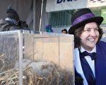 加拿大安省Wiarton 鎮的土撥鼠威利預測今天春天要晚到。圖右為Wiarton 鎮長杰克森(Janice Jackson) 與威利合影。(加通社)
