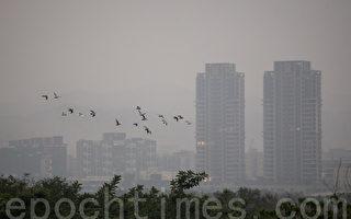 环保署预估,受境外污染物影响,小年夜(6日)空气会较糟,除夕(7日)上半天开始好转。(陈柏州/大纪元)