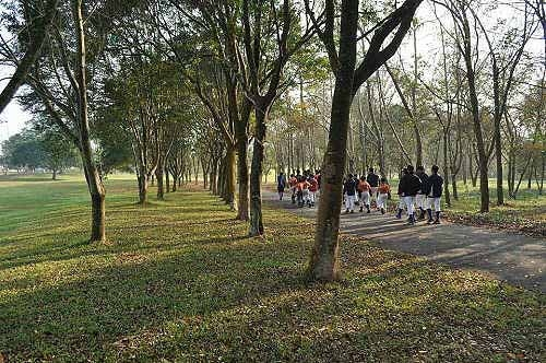 暨南大学校园美景(2) (图片提供:tony)