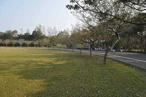 暨南大学校园美景(1) (图片提供:tony)