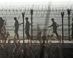 朝鮮上級軍官鼓勵下屬去農田偷食,並表示,不知道什麼時候會弄出事來,能吃飽的時候趕緊吃飽肚子。(JOHANNES EISELE/AFP/Getty Images)