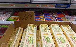 雞蛋價格不升反降。(蔡溶/大紀元)