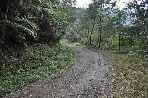 啦卡登山步道终点,约位于内洞林道里程4.3K处。 (图片提供:tony)