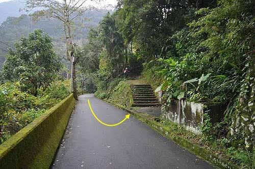 左侧有石阶步道,取捷径上山。 (图片提供:tony)