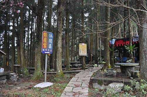 拔刀尔山登山口,就在保庆宫旁的杉林区。 登山十余年,与此山依然无缘,下次再来吧。 (图片提供:tony)