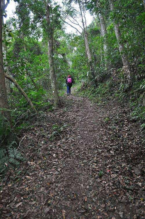 续行保庆宫步道,转为质朴的泥土路。 (图片提供:tony)