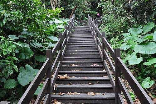 """保庆宫步道入口(园区导览图称为""""生态步道"""")。 (图片提供:tony)"""