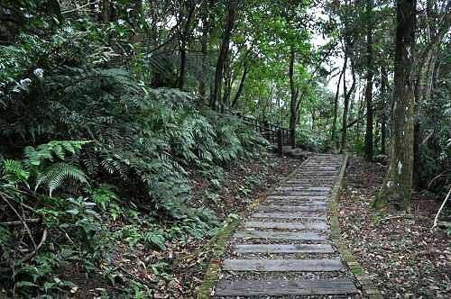 保庆宫步道(乌来瀑布公园~保庆宫)(图片提供:tony)